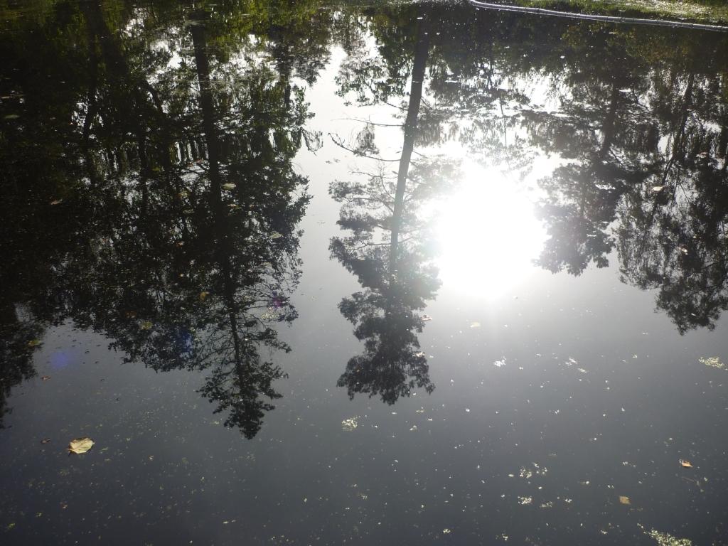 spiegelungen